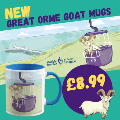 GREAT ORME GOAT MUGS (15)