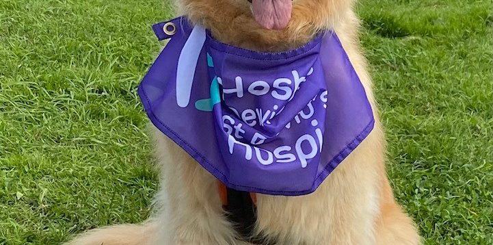 Elsa can't wait to take part in Westshore Walkies!